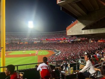 久々の野球観戦